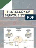 Histology Of nervous System