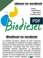 Biodiesel No Nordeste
