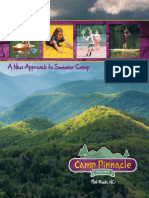 Camp Pinnacle Summer Camp 2014 Brochure