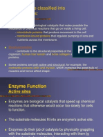 4. Protein Functions