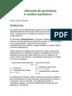 Electroforesis de proteínas