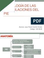 Examen Del Pie