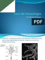Curs Neurologie 1