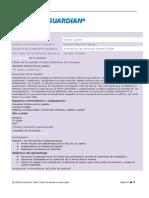 plantilla plan unidad ricardo 21 nov