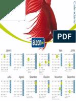 Calendário 2014 Betta