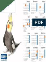 Calendário 2014 Calopsita