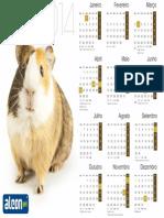 Calendário 2014 Porquinho-da-India