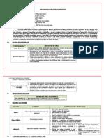 Programación Curricular Anual de Comp 5º 2013
