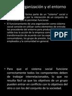 5.1.1 La Organizacion y Su Entorno