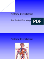 Sistema Circulatorio Preu