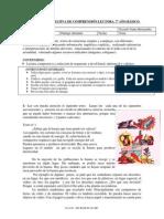 EVALUACIÓN    SUMATIVA DE COMPRENSIÓN LECTORA portafolio