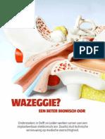 Wazeggie? Een beter bionisch oor