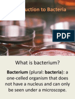 Introduction to Bacteria