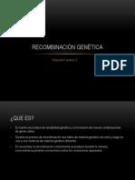 Recombinación Genética