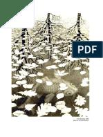 La alteración del bosque húmedo tropical como consecuencia de las decisiones de las familias campesinas para la expansión de la frontera agropecuaria (1987 - 2003), serranía de la Lindosa, Guaviare - Colombia.