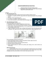 Sistem Reproduksi Manusia.doc
