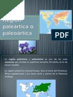 Región paleártica o paleoártica