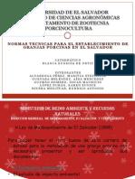 Normas técnicas para el establecimiento de granjas porcinas en El Salvador