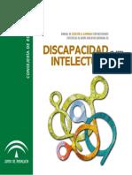 10_intelec discapacidad