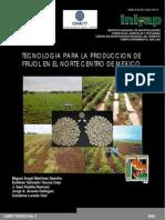 Libro Tecnologia Frijol Norte Centro[1]