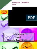 20 Biology 1-30-08 Mutations