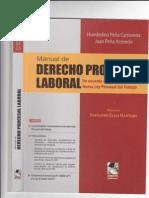 Manual- Procesal Laboral