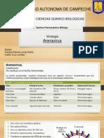 Arenavirus (1)