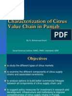 Characterization of Citrus Value Chain in Punjab, Pakistan