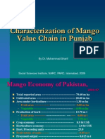 Characterization of Mango Value Chain in Punjab, Pakistan