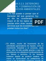 DETERIORO AMBIENTAL Y DISMINUCIÓN DE LOS SERVICIOS AMBIENTALES