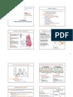 CURS_11_Fiziopatologia Tulburarilor de Ritm Si Conducere2