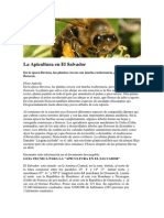 La Apicultura en El Salvador.docx