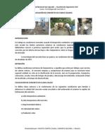Colocación del concreto en climas calidos - presentado por Huayta Carita y Zamata Calcina.docx