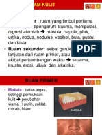 K2b - RUAM KULIT