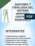 Anatomia y Fisiologia Del Sistema Nervioso Central.m