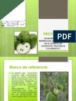 diapositivas-proyectos