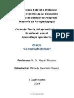Ensayo No. 2 de Mayari, La Neuroplasticidad
