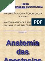 Anatomia Das Anestesias