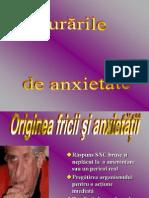 Tulburarile de Anxietate 23
