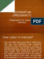 Antepartum