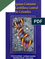 Mariposas Colombia 2