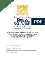 REALIZACIÓN DE UN PLAN MOTIVACIONAL TIPO PARA UN EQUIPO DE TÉCNICOS DE UNA ORGANIZACIÓN DEPORTIVA (RECURSOS HUMANOS)