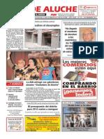 GUÍA DE ALUCHE diciembre 2013.pdf