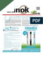 Danok91.pdf