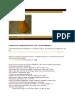 POMI - [ 4 ] PEST - [ 5 ] TRATAMENTE - [ 3 ] Bacterioza - Inegrirea Frunzelor