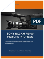FS100_PP.pdf