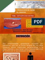 Cisticercosis Bovina.expo