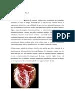 Fgf Atividade Formativa II
