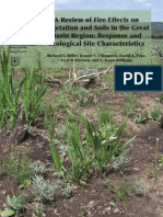 A Review of Fire Effects on Vegetation and Soils in the Great Basin Region