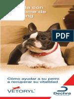 Vetoryl Client Brochure Spanish